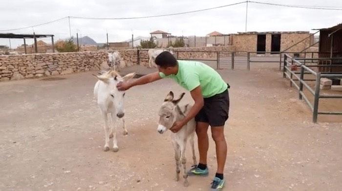 casa-rural-fuerteventura-nv-n1