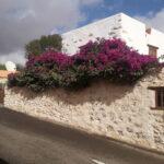tamasite-entrada2-fuerteventura-canarias